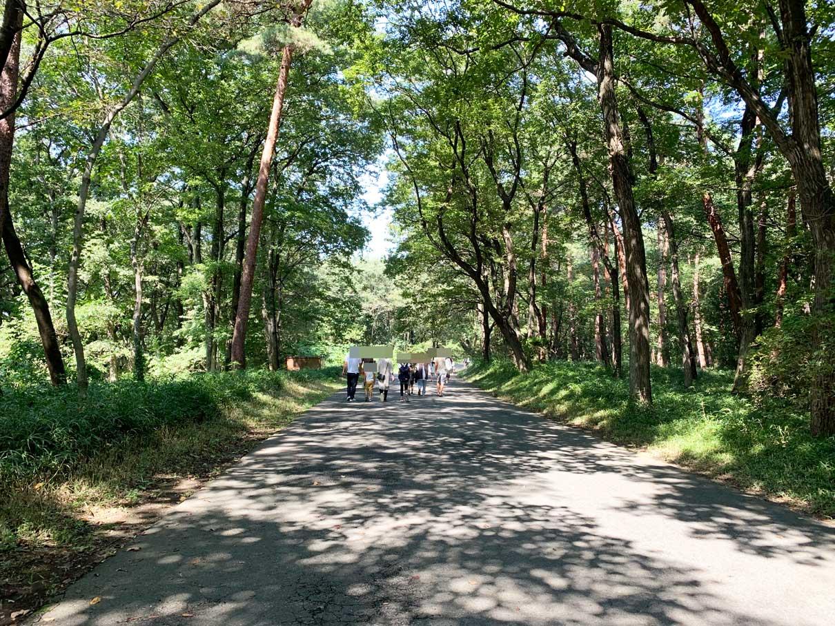 埼玉 県 森林 公園