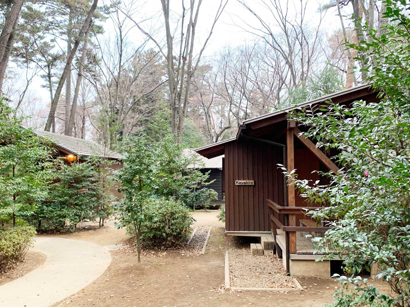 キャンプ 清水 公園